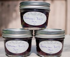Saskatoon Berry Jam (regular and sugar free) Enjoy those berries all year long with this easy Saskatoon Berry Jam recipe Saskatoon Recipes, Saskatoon Berry Recipe, Jelly Recipes, Jam Recipes, Canning Recipes, Sugar Free Jam, Low Sugar, Jam Recipe Without Pectin, Plum Jam