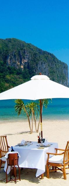 tropical paradise | LOLO