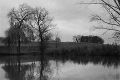 Weiher (Zorki / Ilford Plus) Beautiful Places, Country Roads, Display, Photography, Image, Pictures, Floor Space, Photograph, Billboard
