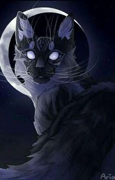Moonwatcher by Aria-Hope – Art – - nimivo sites Warrior Cats Series, Warrior Cats Fan Art, Warrior Cats Books, Warrior Cat Drawings, Mythical Creatures Art, Fantasy Creatures, Creature Drawings, Animal Drawings, Image Bleu