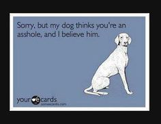 My dogs are ALWAYS right about people!