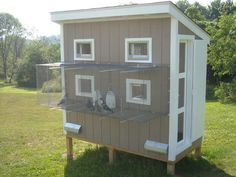 Outdoor Pigeon Coops | ... Tue Jun 19 2012 01:26 PM Here's Charlie (WPG) and my new pigeon loft