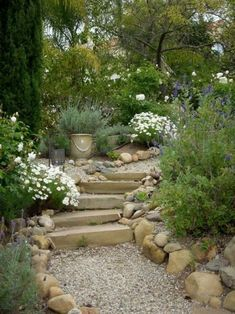 Garden Planning Gorgeous Gravel Garden Ideas that Inspiring - Gorgeous Gravel Garden Ideas. Creating a gravel garden need not be a difficult process. Too many people make it such an all-consuming endeavor.
