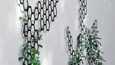 Comb-ination, la struttura modulare per piante rampicanti