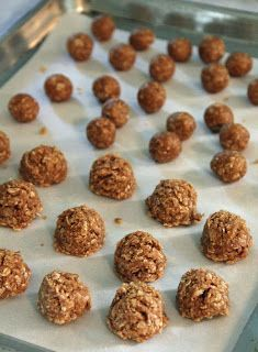 No Bake Dog Treats-maybe Max will like no bake cookies as much as his daddy does. :)