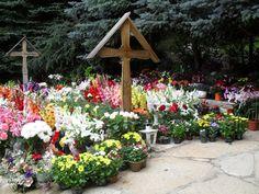 blogdetravel: Pelerinaj la Mănăstirea Prislop (I)
