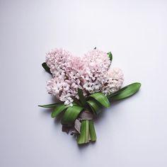 Hyacinth Bouquet.  #hyacinth #flower #bouquet by nonihana_