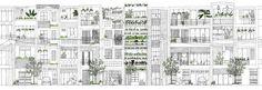 Stacking green, Vo Trong Nghia + Daisuke Sanuki + Shunri Nishizawa.  lovely pen drawn street elevation
