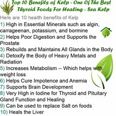 """Kelp Health Benefits •Kelp: This """"gift from the sea"""" has been used for centuries as a natural """"age defying"""" ingredient. Kelp helps promote hormone growth and studies have shown it useful in helping to curb weight gain. http://www.spxnutrition.com/flipmylife/"""