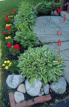 Front Yard Flowers // for the sidewalk addit. I want to add. Landscaping With Rocks, Outdoor Landscaping, Outdoor Plants, Front Yard Landscaping, Outdoor Gardens, Landscaping Ideas, Outdoor Decor, Beautiful Gardens, Beautiful Flowers