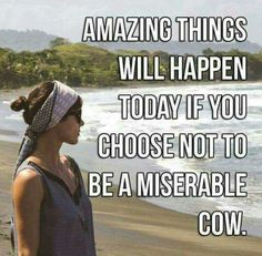 Amazing things will happen today if you choose not to be a miserable cow.