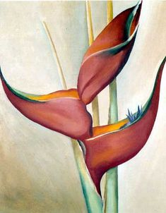 Georgia O'Keeffe. Not from My Garden 1967. The Magic of Nature