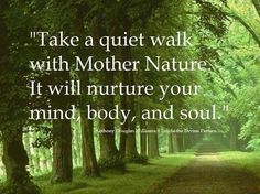 Take A Quiet Walk With Mother Nature. It Will Nurture Your Mind, Body