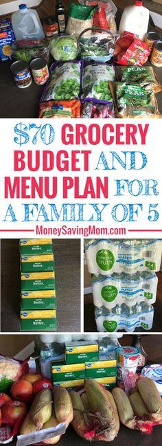 Ideas recipe dinner on a budget menu planning for 2019 Family Meal Planning, Budget Meal Planning, Cooking For A Crowd, Cooking On A Budget, Cooking Ideas, Easy Cooking, Bulk Cooking, Cooking Recipes, Inexpensive Meals