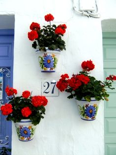 白い壁を飾る赤いゼラニウム / white wall and red geranium **from Valencia, Spain**