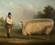 In the wealthy British landowners commissioned exaggerated paintings of their livestock as a symbol of wealth and status. Often, the animals were painted with large rectangular bodies Wooly Bully, Sheep Art, Cow Painting, Art Uk, Naive Art, Illustrations, Canvas Prints, Art Prints, Your Paintings