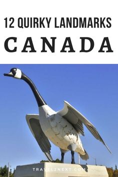 12 quirky landmarks in Canada. Going on a road trip around Canada to oogle at giant beavers and UFO landing pads might sound like a crazy way to spend your vacation. States In America, North America, Visit Canada, Canada Canada, Caribbean Resort, Atlantic Canada, Newfoundland And Labrador, Roadside Attractions, Countries Around The World