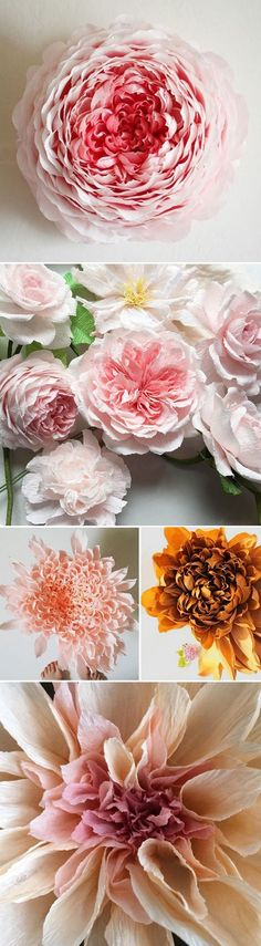 paper flowers by tiffanie turner <3