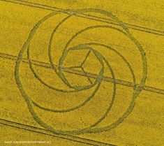 Crop Circle at Waden Hill, Nr Avebury, Wiltshire. Reported 22nd April 2017