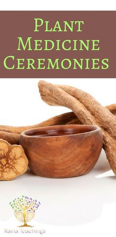 Advice and tips about seeking out plant medicine ceremonies Holistic Healing, Natural Healing, Natural Herbs, Reiki Training, Sacred Plant, Spiritual Enlightenment, Spiritual Awakening, Nature Spirits, Spiritual Development