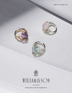 AW14 William & Son Flagship Store - Collection of Sarah Ho for William & Son gold rings.