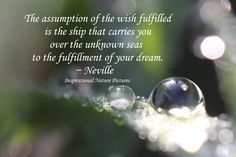 """""""The assumption of the wish fulfilled is the ship that carries you over the unknown seas to the fulfilment of your dream."""" - Neville"""