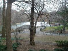 Central Park, via Flickr