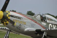 P-51 Mustang Gunfighter
