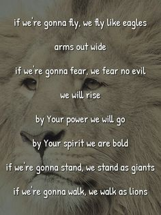Lions by Skillet
