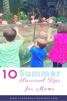 Summer is finally here! These are some great tips for moms to survive the craziness summer brings.