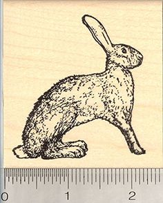 Antelope Jackrabbit Rubber Stamp Wild Hare Bunny Rabbit *** Learn more by visiting the image link.-It is an affiliate link to Amazon. #PrintingStamping
