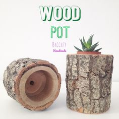 Kütük saksi bilgi ve siparis ✉️ baccafy@gmail.com - DM  #baccafy #handmade #woodpot #succulentpot #kutuksaksi #ahsapdekor #homedecor #dekorasyon #decoration #woodwork #succulent #flowerpot #garden #outdoor #decor #deco #homedetails #woodenpot #pot #kütüksaksi #ahsapsaksi #gardendecor #spring #bahar #flower #interior #design #pinterest #evimdergisi #outdoor