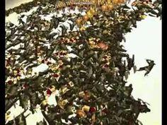 Christmas Tree, Holiday Decor, Teal Christmas Tree, Xmas Trees, Christmas Wood, Christmas Trees