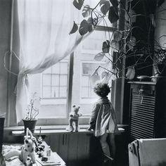 luzfosca:    Eva Besnyö  Jordaan, Amsterdam, 1955  From Eva Besnyö  Thanks toliquidnight