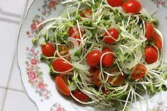 A Dieta de Ornish tem sido considerada um excelente programa de emagrecimento devido aos benefícios que traz ao organismo. É uma dieta multifuncional em questão de tratamentos de saúde, pois pode ser adaptada