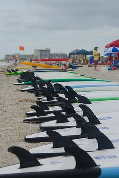 Surfboards lined up and ready to surf Treasure Island!,