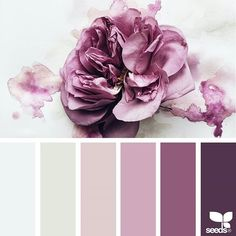 today's inspiration image for { inked flora } is by @georgiestclair ... thank you, Georgie, for another *gorgeous* #SeedsColor image share!