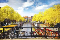 A beautiful place in Amsterdam. Beautiful Landscapes, Netherlands, Amsterdam, Tourism, Beautiful Places, Europe, Urban, River, Park