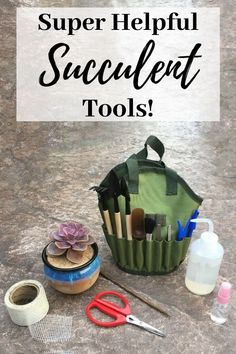 Do you really need special tools to grow succulents? If so, which ones - and how do you use them? No, you don't HAVE to have all these tools, but some I use every single day! See exactly which tools are my must-haves, and what they're used for and why. Pin now, read later!  :)  #succulentcare #succulenttools #succulenttoolkit #succulentgardentools