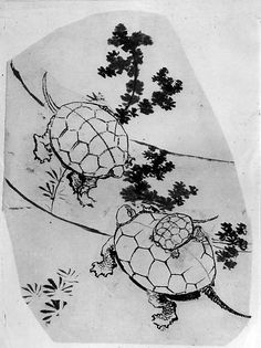 Attributed to Katsushika Hokusai (Japanese, 1760–1849). Turtles, 18th–19th century. The Metropolitan Museum of Art, New York. Gift of Annette Young, in memory of her brother, Innis Young, 1956 (56.121.12)