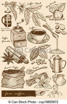 coffee plant illustration - Recherche Google