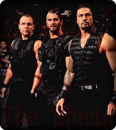 Dean Ambrose, Seth Rollins, Roman Reigns...Believe in The Sheild