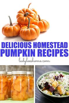 A collection of delicious homestead pumpkin recipes using fresh pumpkin. Sweet and savory pumpkin recipes that are simple to put together and bring the flavors of fall home! Roasted Pumpkin Seeds, Roast Pumpkin, Pumpkin Soup, Canned Pumpkin, Fresh Pumpkin Recipes, Healthy Pumpkin, Fall Recipes, Healthy Recipes, Low Acid Recipes