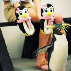 Family Over Everything, Penguin, Slippers, Slipper, Penguins, Flip Flops, Sandal