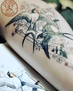 I like 110 times, 4 comments – Marie Roura (Marie Roura.epureatelier) on Inst … - Tattoos Forearm Tattoos, Body Art Tattoos, Small Tattoos, Sleeve Tattoos, Tatoos, Barn Swallow Tattoo, Swallow Bird Tattoos, Two Birds Tattoo, Bird Tattoo Back