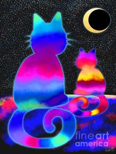 Moon Star Cats