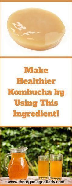 Make Healthier Kombucha Using This Ingredient!