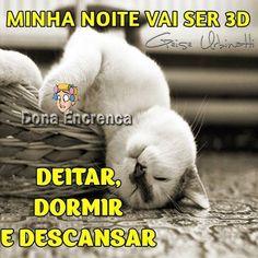 Minha noite vai ser 3D: deitar, dormir e descansar #boanoite boa noite gato