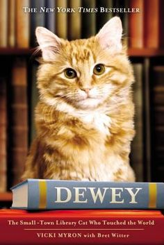 "Dewey: The Small -Town Library Cat Who Touched the World, by Vicki Myron.  Dewey was abandoned as a kitten on the coldest night of the year, stuffed in the returned book slot at the Spencer Public Library in Iowa. He won the heart of Vicki Myron, the librarian who found him, and for the next 19 years he charmed the people of Spencer. Dewey's adventures continue in ""Dewey's Nine Lives."""