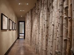 hallway-wall-birch-trees